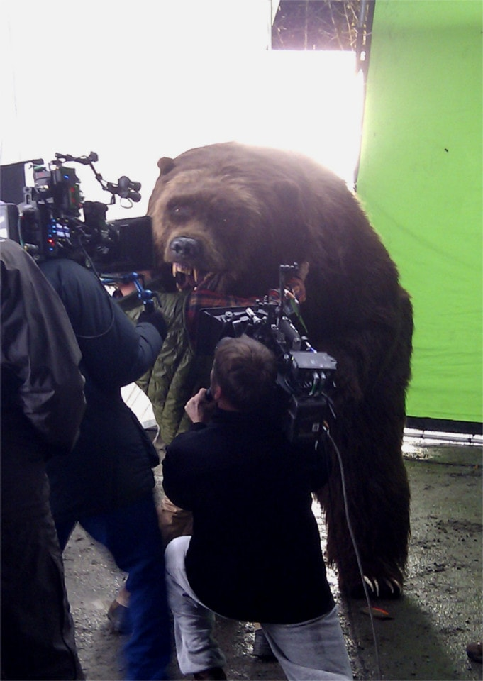 Bear on set