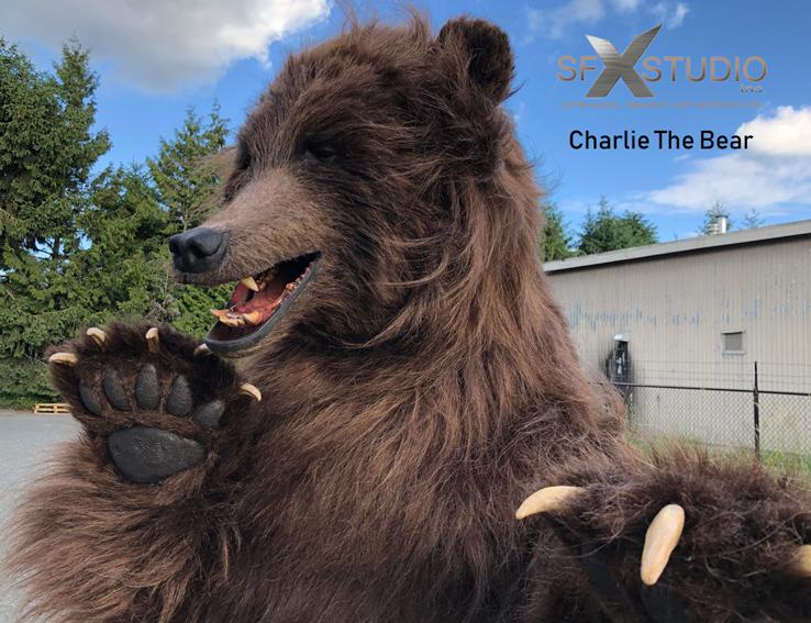 Charlie The Brown Bear